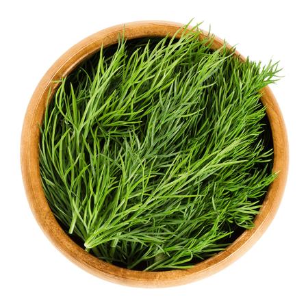Verse dillefrondjes in houten kom, ook wel dillweed genoemd. Groene bladeren van de jaarlijkse Anethum graveolens, gebruikt als kruid en kruiden. Geïsoleerde macro voedsel foto close-up van boven op witte achtergrond.