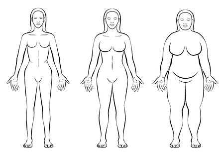 feminino: Tipos de constituição do corpo feminino - peso fino, normal e figura gorda de uma mulher - ectomorfo, mesomorfo e endomorfo - ilustração vetorial esboçada isolada de três mulheres com anatomia diferente.