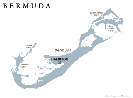 british english: Bermuda political map with capital Hamilton. British Overseas Territory in the North Atlantic Ocean. Member of the Caribbean Community. Gray illustration on white background. English labeling. Vector.