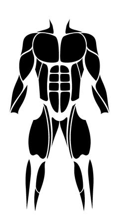 Músculos - figura abstracta o icono negro de los músculos humanos más grandes - ilustración vectorial aislados sobre fondo blanco.
