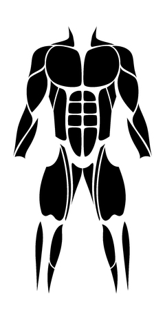 largest: Muscles - abstract black figure or icon of the largest human muscles - isolated vector illustration on white background.
