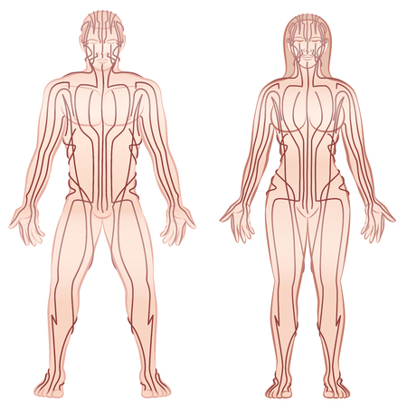 Body acupuncture meridians of man and woman - alternative therapy tcm treatment infographic. Illustration