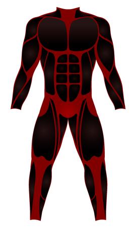 ダイバー スーツ筋肉光学 - 赤黒いウェット スーツ - ウォーター スポーツやヒーローのコスチュームとして着用する - 白い背景のベクトル図を分離しました。