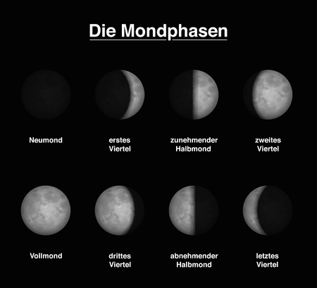 observation: Lunar phases of the moon - GERMAN LABELING - different shapes of illuminated portions. Vector illustration on black background.