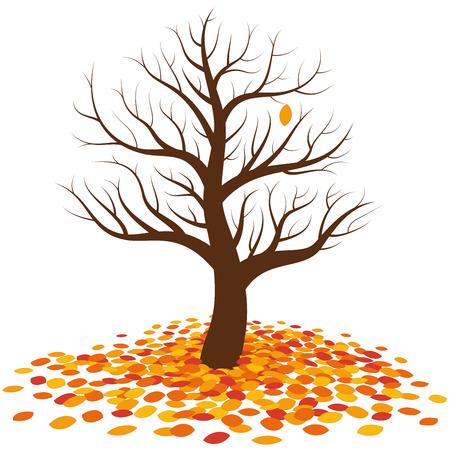 Albero senza foglie in autunno con un'ultima singola foglia arancione su di esso in attesa di cadere sul mucchio più colorato di foglie alla radice dell'albero.