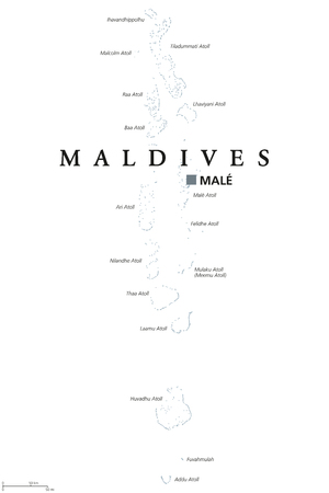 Maldives political map with capital Male. English labeling. Republic and South Asian island Country in the Indian Ocean. A chain of atolls. Gray illustration on white background. Vector. Ilustração