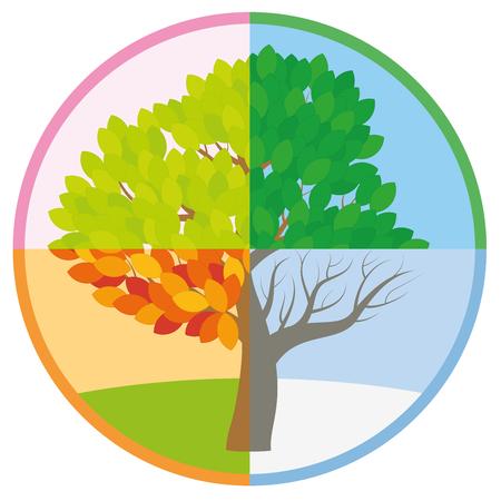 Albero di quattro stagioni in primavera, estate, autunno e inverno disposti in un cerchio. Vettoriali