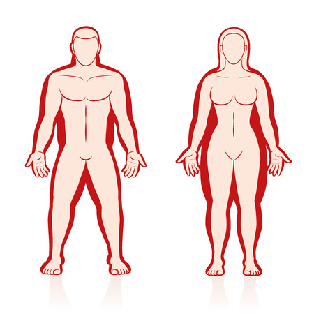 frontal view: Overweight and normal weight in comparison, anterior view - male and female body added with red colored fat deposits. Illustration