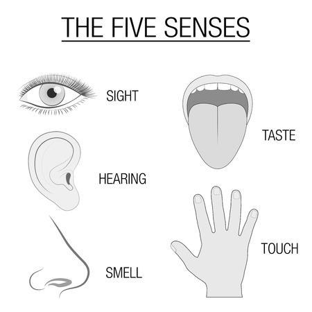 Illustration of five human senses.