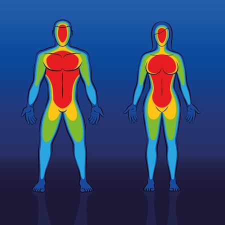 Termograma de calor corporal del cuerpo masculino y femenino: termografía infrarroja de una pareja con zonas azules más frías en las regiones del borde como manos y pies y el torso rojo mucho más cálido. Ilustración de vector