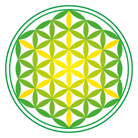 Green Energy Flower of Life over white. Ancient symmetrical symbol, composed of multiple overlapping circles, starting by a single circle, forming a flower like pattern. Sacred geometry. Vector.