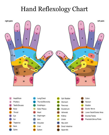 Hand reflexology. Alternative acupressure and physiotherapy health treatment.