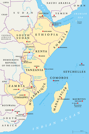 East Africa region, political map. Area with capitals, borders, lakes and important rivers. Easterly region of the African continent, also called Eastern Africa. English labeling. Illustration. Vector 일러스트