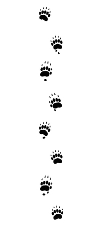 Badger tracks. Typical footprints with long claws - isolated black icon vector illustration on white background. Çizim