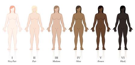 Types de peaux. Six femmes avec différentes couleurs de peau. Très juste, juste, moyen, olive, marron et noir, pour déterminer le facteur de protection solaire.