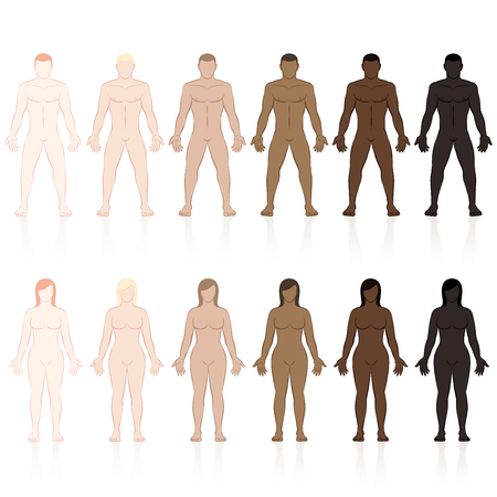 Male and female bodies with different skin types. Very fair, fair, medium, olive, brown and black. Isolated vector illustration on white background. Stock Illustratie