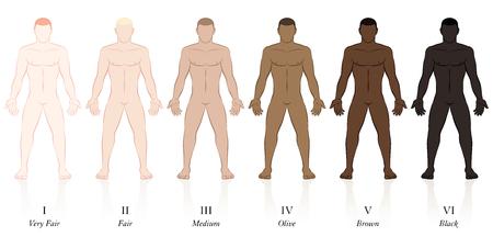 Types de peaux. Six hommes avec différentes couleurs de peau. Très juste, juste, moyen, olive, marron et noir, pour déterminer le facteur de protection solaire. Vecteurs