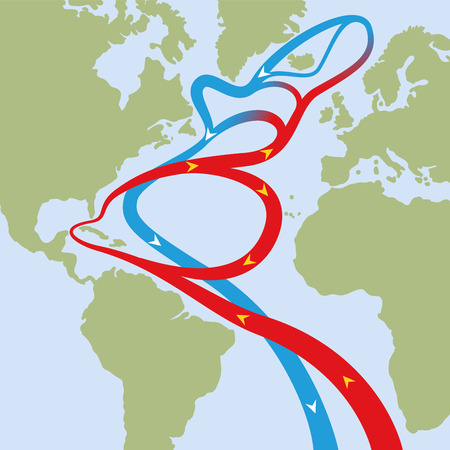 Gulf stream in atlantic ocean. Circular flows of red warm surface currents and blue cool deep-water currents that cause weather phenomena like hurricanes and is influential on the worlds climate. Illustration