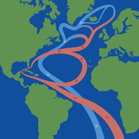 Gulf stream and North atlantic current that cause weather phenomena like hurricanes and is influential on the worlds climate. Flows of red thermal surface currents and blue cooled deep-water currents.