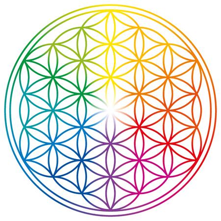 Blume des Lebens in Regenbogenfarben. Geometrische Figur, spirituelles Symbol, Heilige Geometrie. Überlappende Kreise bilden ein blütenartiges Muster mit symmetrischer Struktur.