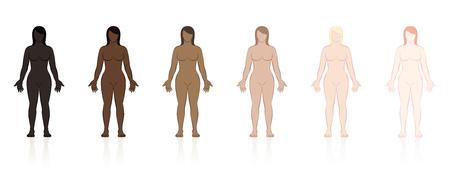 Tipi di pelle. Sei donne di diversi colori etnici dal nero al marrone al biondo. Illustrazione vettoriale isolato su sfondo bianco.