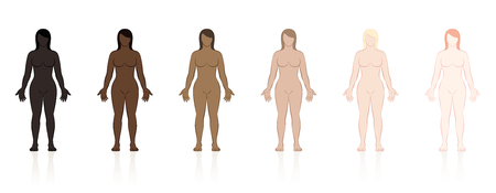 Skin types. Six naked women of different ethnic colors from black to brown to fair. Isolated vector illustration on white background.