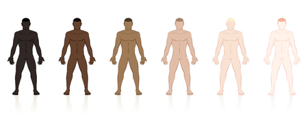 Skin types. Six naked men of different ethnic colors from black to brown to fair. Isolated vector illustration on white background.