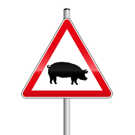 Caution street sign with pig. Beware of the pigs on the road. Isolated on white.