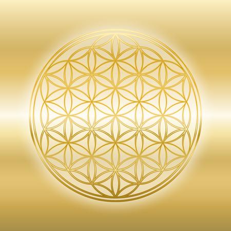 Golden Flower of Life, gleaming, glossy, gold symbol on golden background. 일러스트