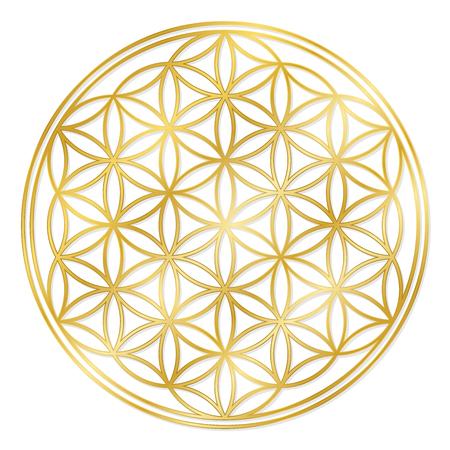 Golden Flower of Life, used for decoration or golden pendant. Geometrical symbol on white background.