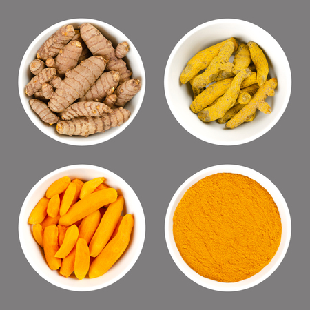 Turmeric in white bowls. Fresh rhizomes, whole and peeled, processed and powder. Curcuma longa, tumeric. Spice for curries, coloring mustard and in medicine. Food photo closeup from above over gray.