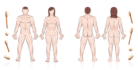 Body skin brushing instruction for love couples with directions of brush strokes. Partner massage for health, beauty, detox, skincare and relaxation. Nude man and woman. Иллюстрация