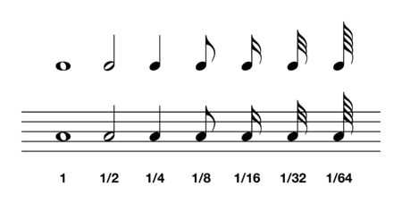 Valori delle note standard. Intero, metà, quarto e dall'ottavo al sessantaquattresimo. Nella notazione musicale, il valore della nota indica la durata relativa di una nota, utilizzando la testa della nota, il gambo o il flag. Illustrazione. Vettore.