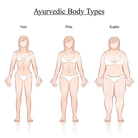 Female body constitution types - ayurvedic typology - vata, pitta, kapha. Isolated outline vector illustration of women - frontal view - different anatomy.