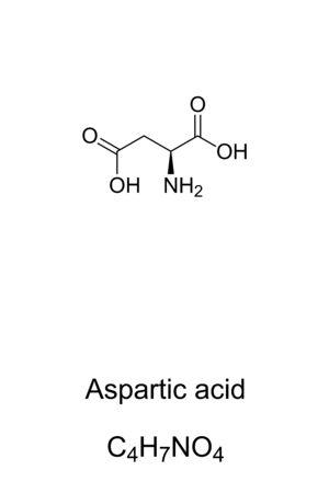 Aspartic acid molecule, skeletal formula. Structure of Asp, C4H7NO4. Ionic form known as aspartate. Neurotransmitter. Compound for the production of aspartame. Structural formula. Illustration. Vector