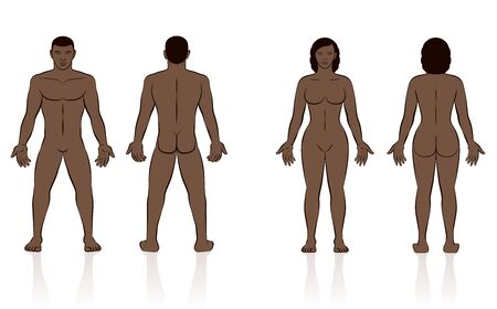 HUMAN BODY - black man and woman, front and back view.