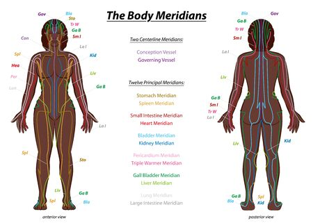 MERIDIAN SYSTEM CHART, black woman, female body with labeled meridians - anterior and posterior view - Traditional Chinese Medicine.