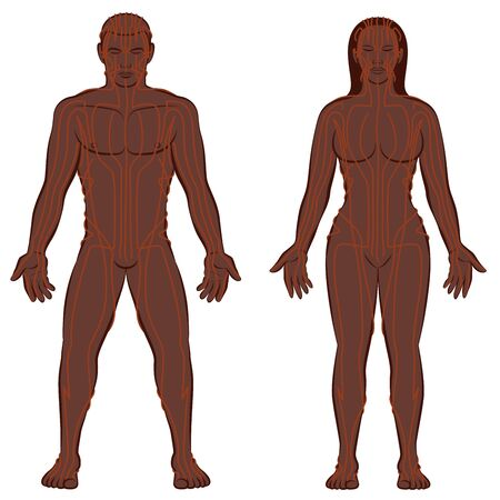 MERIDIAN SYSTEM CHART, black couple, male and female body with meridians, Traditional Chinese Medicine. Vector illustration on white background