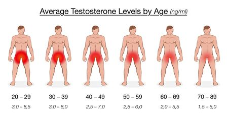 Testosterone level chart with age and decreasing average values in ng / ml, nanogram per milliliter. Naked men with red colored genital regions. Vector illustration.