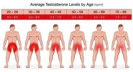 Testosterone chart with increasing age and decreasing values in ng / ml. Illustrated men with fading red color and libido. Vector on white.