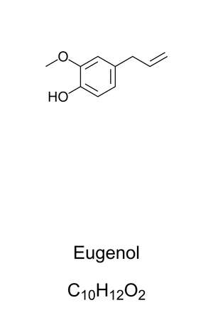 Eugenol, chemical structure and formula. Clove odor. Extracted mainly from clove bud oil and clove leaf oil. Used in perfumes, flavorings and as local antiseptic and anaesthetic. Illustration. Vector.