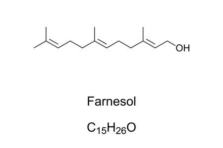 Farnesol, chemical structure. Present in many essential oils such as citronella, neroli, rose and lemon grass. Used in perfumery to emphasize the odors of sweet floral perfumes. Illustration. Vector.