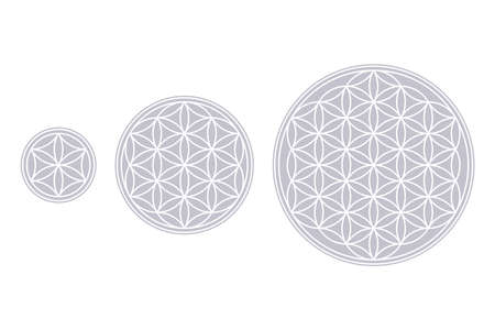 White Flower of Life, Core and Seed of Life over fields of gray. Geometric figures and spiritual symbols of the Sacred Geometry. Overlapping circles forming flower like patterns. Illustration. Vector.