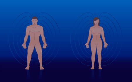 Human magnetic field of male and female body with lines and aura like energy pattern around a couple - for treatment in complementary medicine. Vector illustration on blue background.