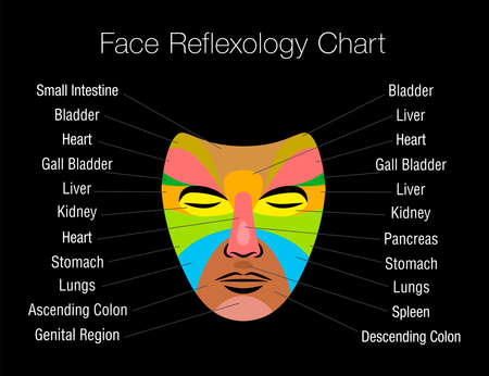 Face reflexology chart with colored areas and names of corresponding internal organs. Colorful zone massage mask on black background.