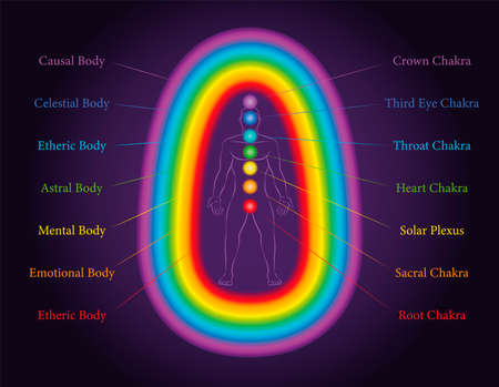 Aura bodies. The seven layers of a meditating man with related chakras in the same colors. Etheric, emotional, mental, astral, celestial and causal layer. Labeled vector illustration chart.