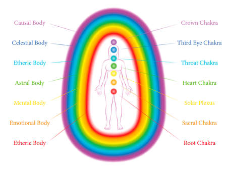 Seven main chakras and corresponding aura layers of a standing woman. Etheric, emotional, mental, astral, celestial and causal layer. Labeled vector illustration chart.