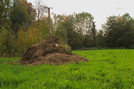 composting in filed to gain organic fertilizer. with trees and grass