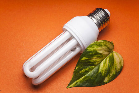 Light  bulb for the Green world photo