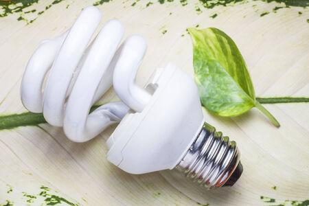 Light  bulb for the Green world photo